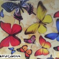 #Symbole de l'âme, le #papillon